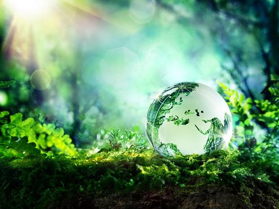 """La """"Eco Vision"""" di NGK SPARK PLUG punta alla decarbonizzazione entro il 2050"""